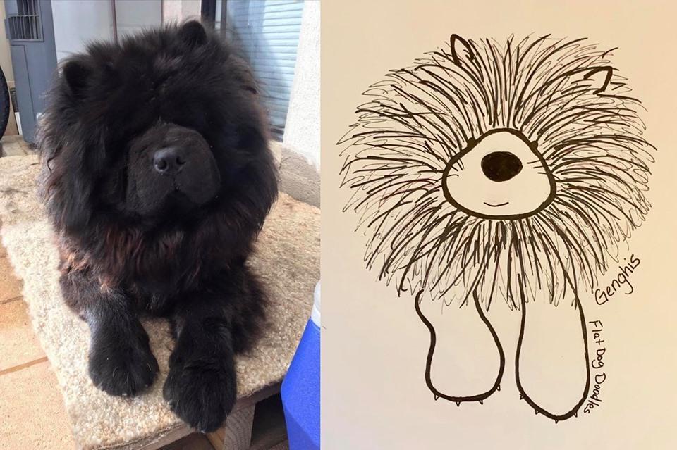 8-flat-dog-doodles-1567790628023.jpg