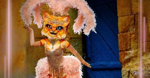the-masked-singer-season-3-reveals-5-1581543113958.jpg