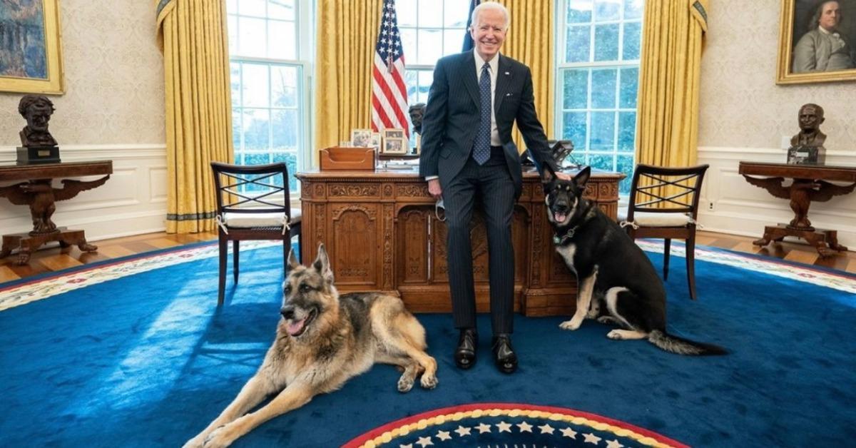 Joe, Major, and Champ Biden