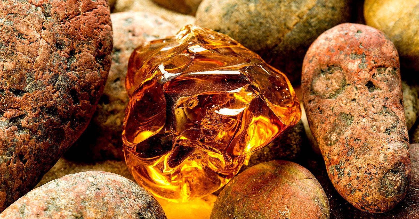 amber-1502300745638.jpg