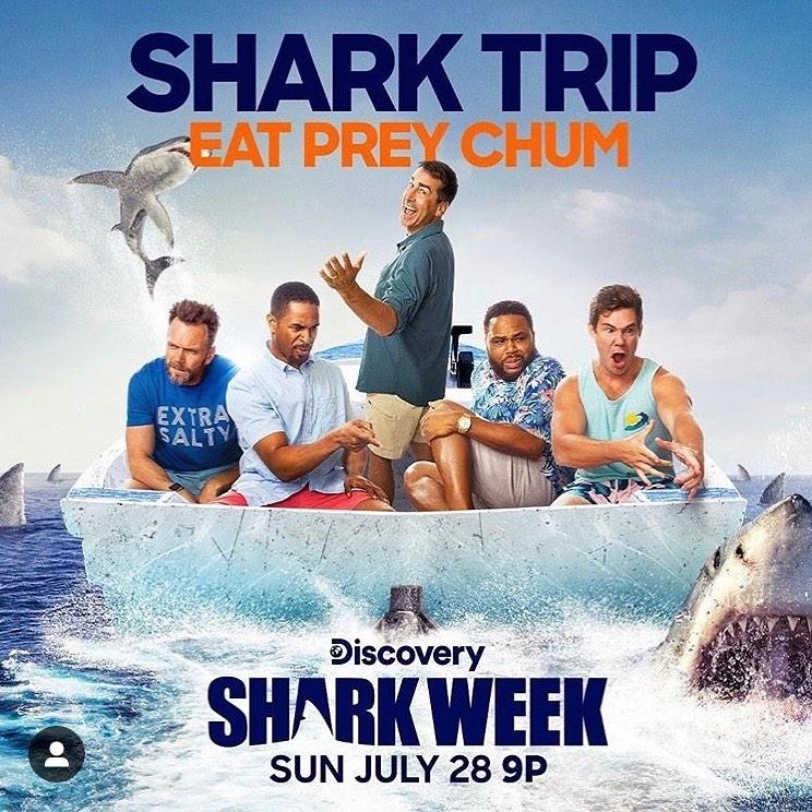 Who Is the Host of Shark Week 2019? Meet Rob Riggle!
