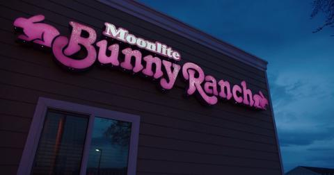 moonlite-bunny-ranch-1550604245961-1550604247710.jpg