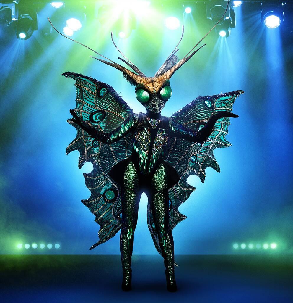 masked-singer-butterfly-1570038257115.jpg