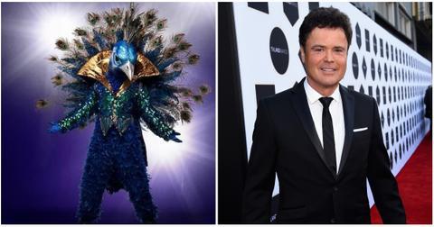 masked-singer-peacock-donny-osmond-1551322052101-1551322054474.jpg