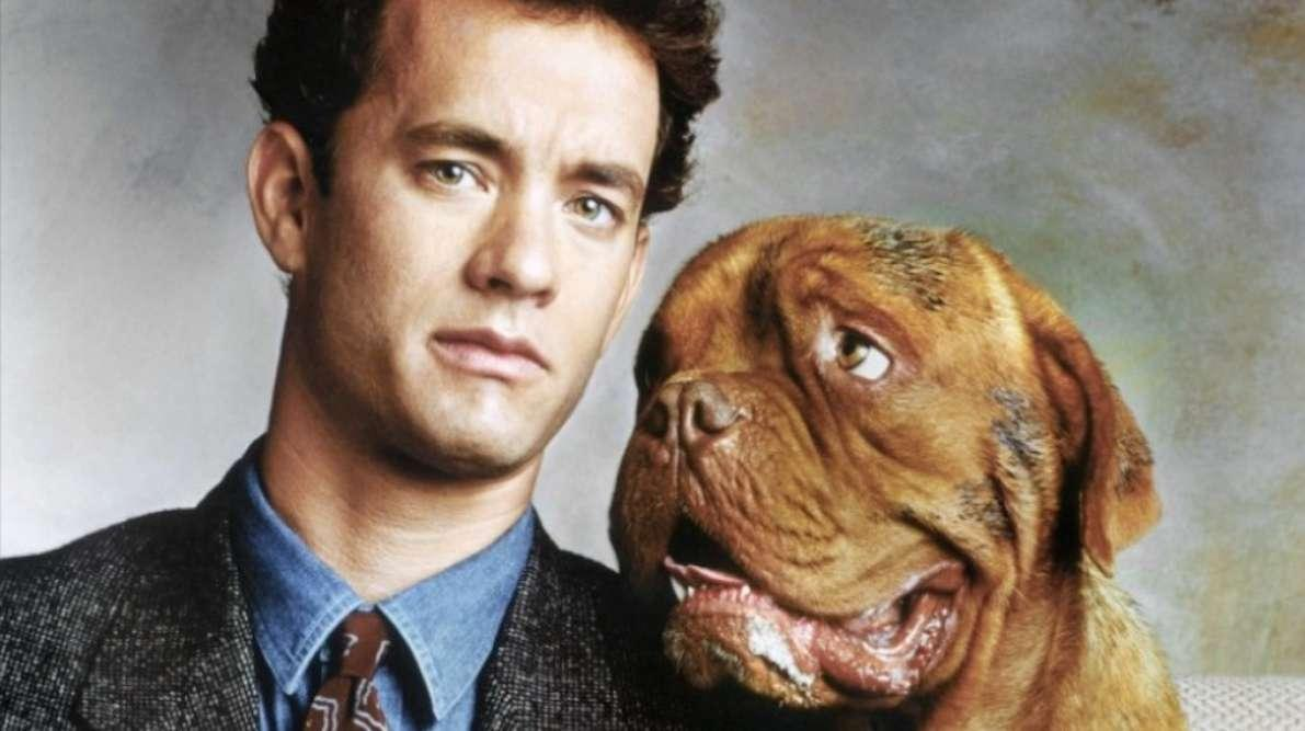turner-and-hooch-1554823238296.png