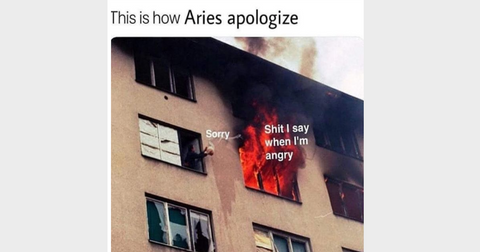 aries-season-memes-13-1553180571920.png