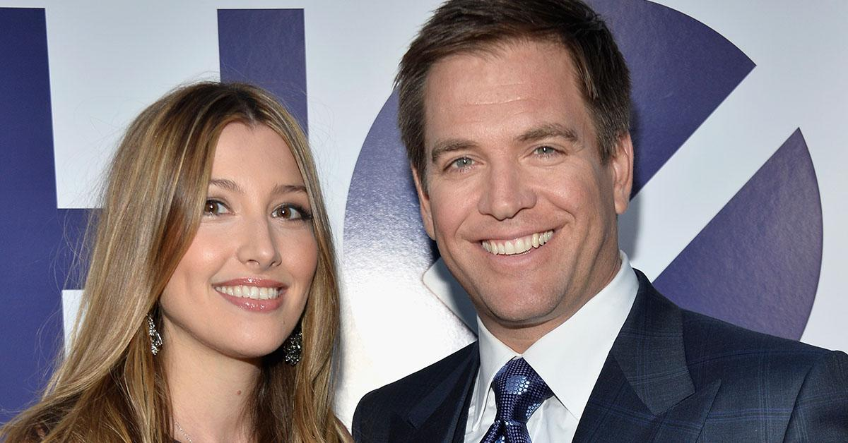 is-michael-weatherly-married-1544805187351.jpg