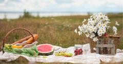 what does picnic stand for