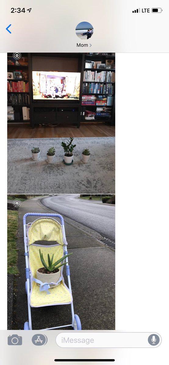plants-grandbabies-4-1553799919648.JPG