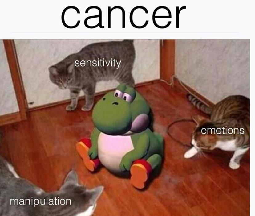 cancer-season-memes-18-1561145931583.PNG