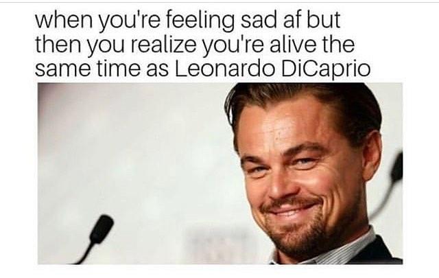 leonardo-dicaprio-memes-10-1573246799249.jpg