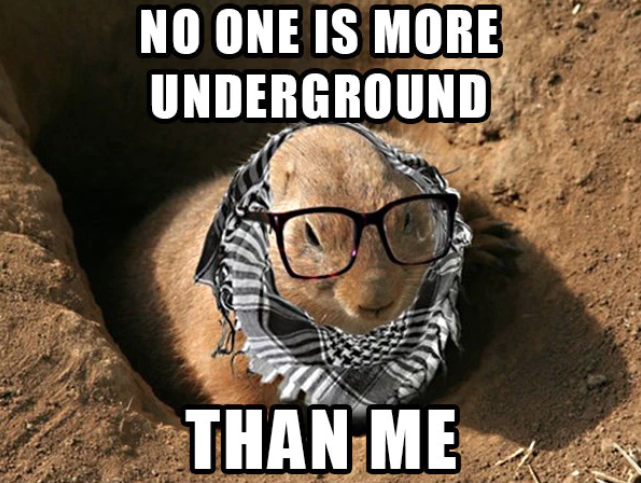 funny-groundhog-day-memes-1-1549036524913-1549036527562.png