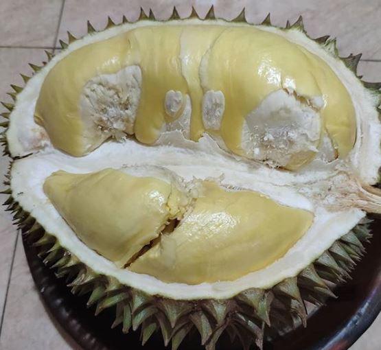durian-fruit-1552329002206.JPG