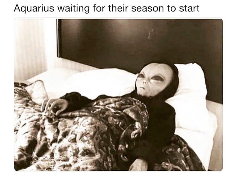 aquarius-season-memes-6-1548039752415.jpg