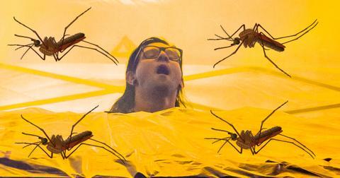 skrillex-mosquito-cover-3-1554219483036.jpg