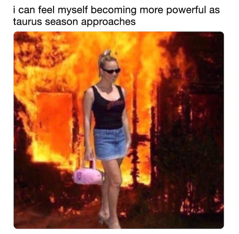 10 Relatable Taurus Season Memes to Send to Your Friends