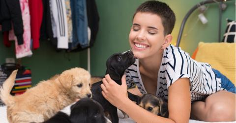 woman-playing-with-puppies-picture-id1042003110-1555682519928.jpg
