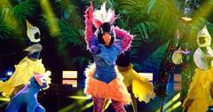 Exotic Bird on The Masked Dancer