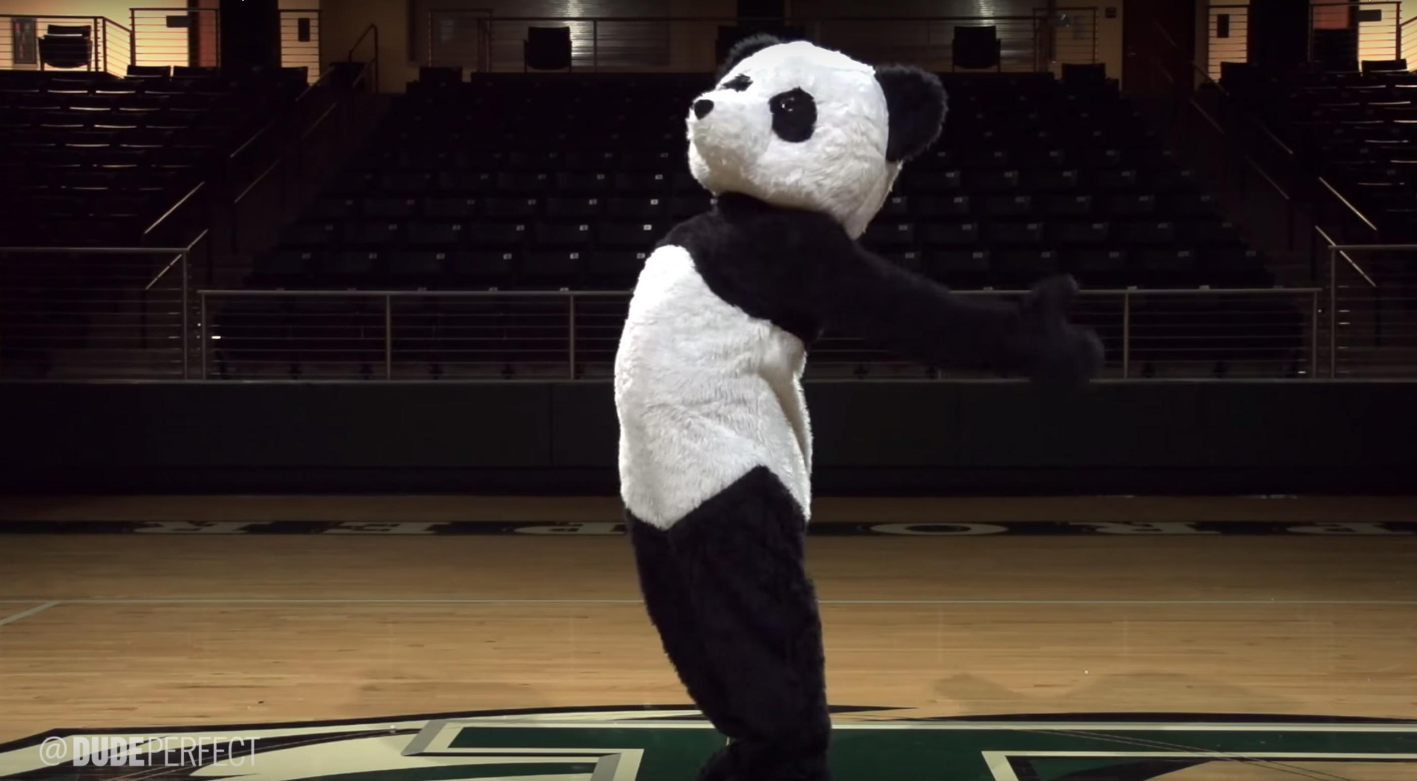 who-is-panda-on-dude-perfect-mascot-1564503707525.jpg