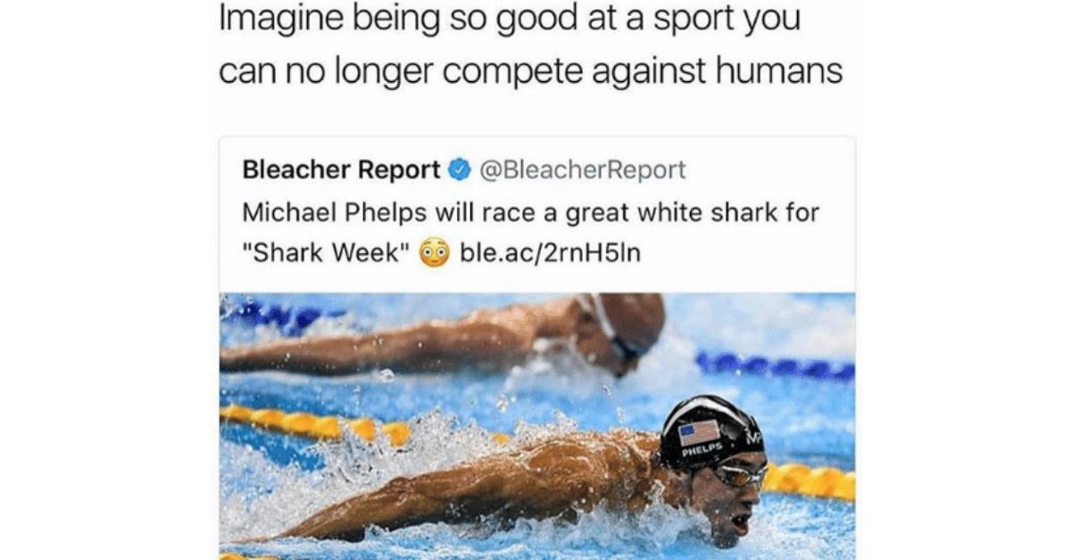 sharkweekmeme4-1532526514779-1532526516661.jpg