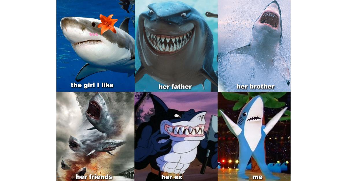 sharkweekmeme18-1532530114671-1532530116776.jpg