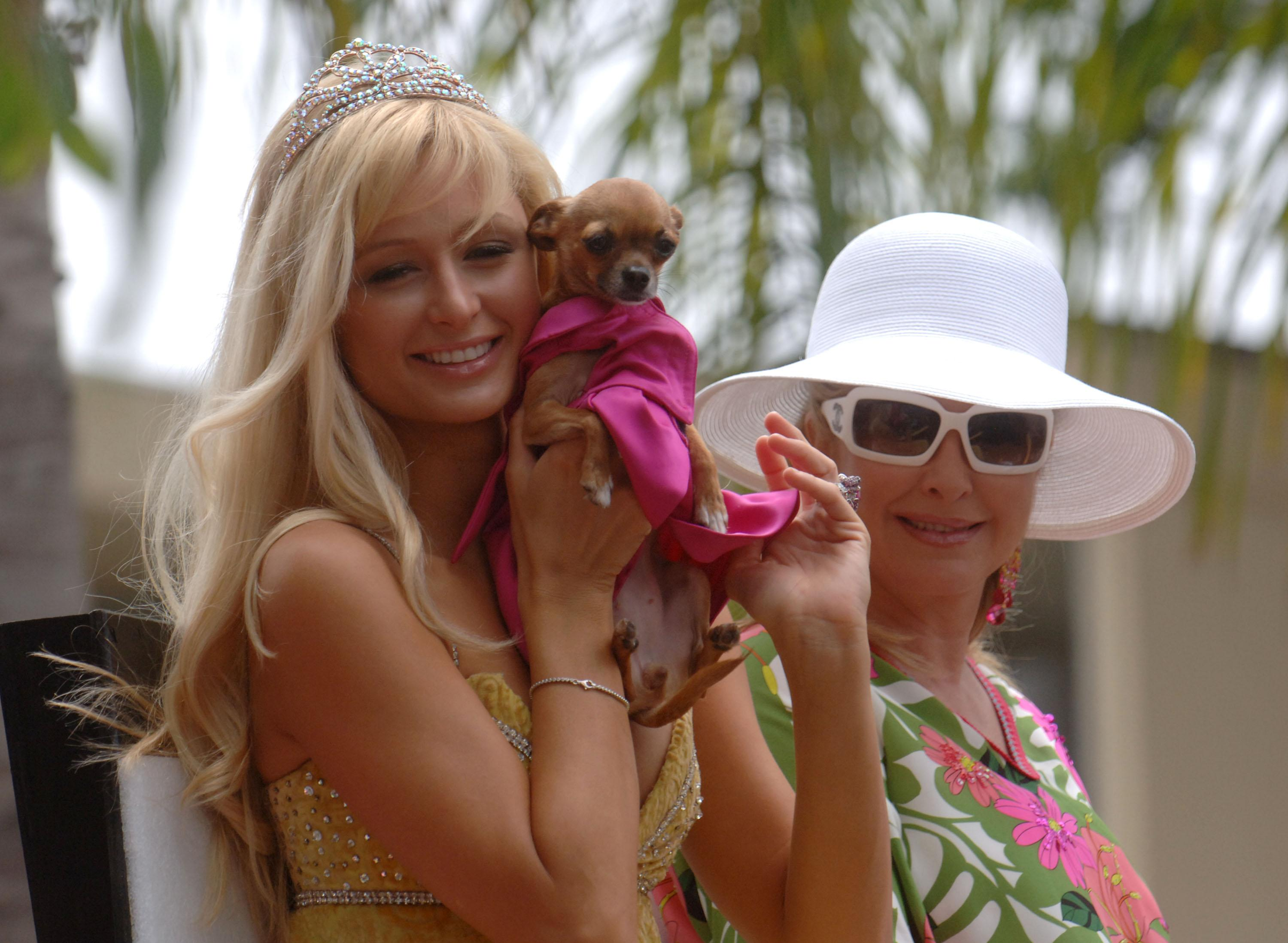 paris-hilton-dog-mansion-1531773911923-1531773914585.jpg