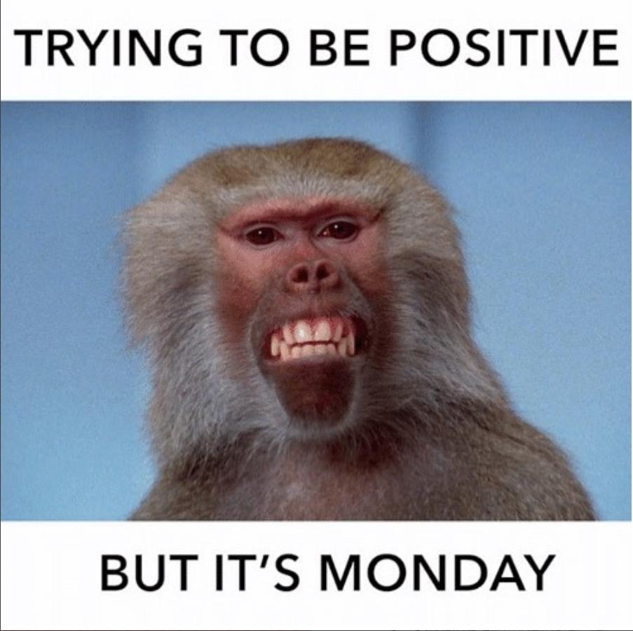 monday-sucks-meme-8-1534183711465-1534183716834.png