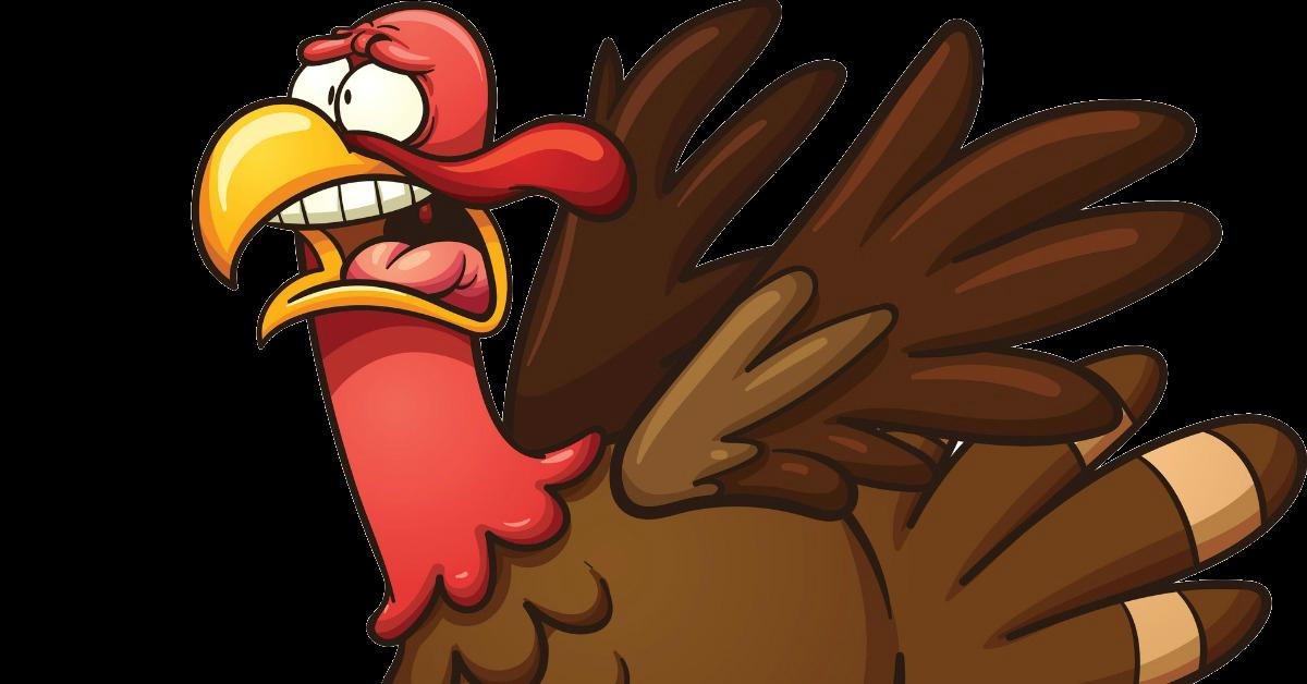 Image result for frightened turkey meme