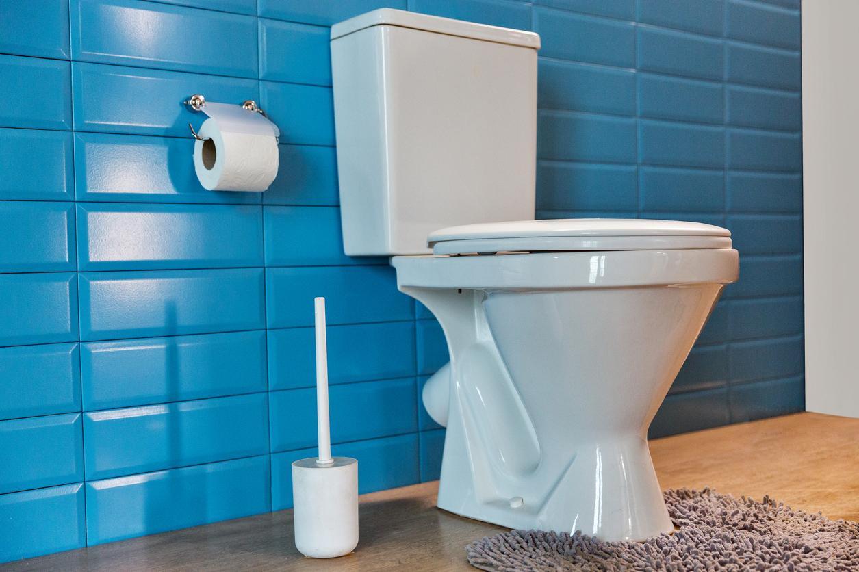 toilet-1535564663240-1535564665219.jpg