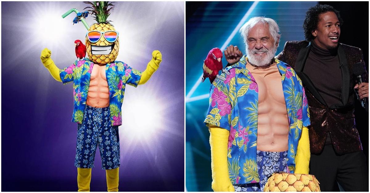 masked-singer-pineapple-1547658678952.jpg