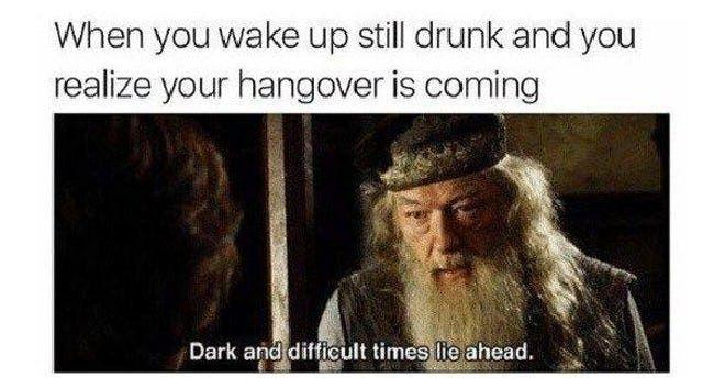 27 Hangover Memes That Will Help Your Throbbing Headaches