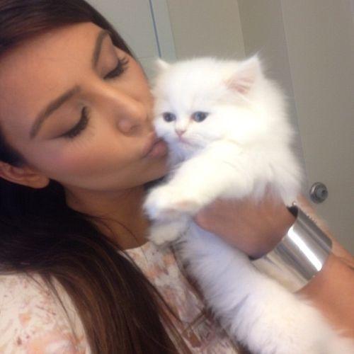 kim-kardashian-cat-1534317537959-1534317540002.jpg
