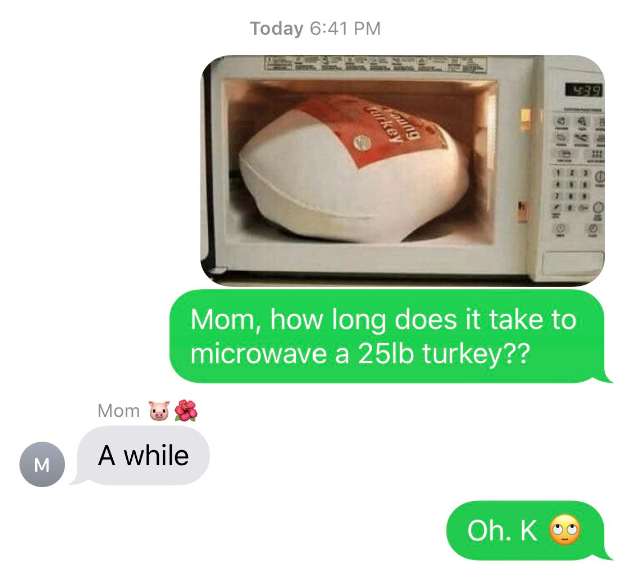 microwave-turkey-challenge6-1542644165051-1542644170116.png