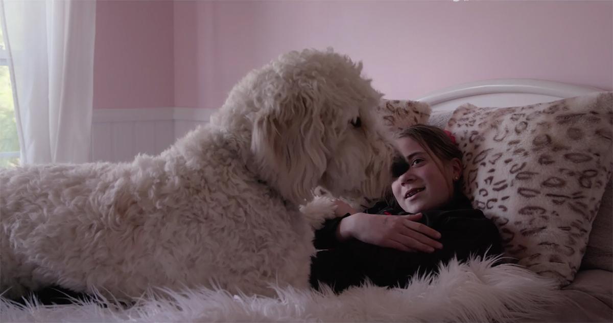 dogs-netflix-documentary04copy-1540912631530-1540912633208.jpg