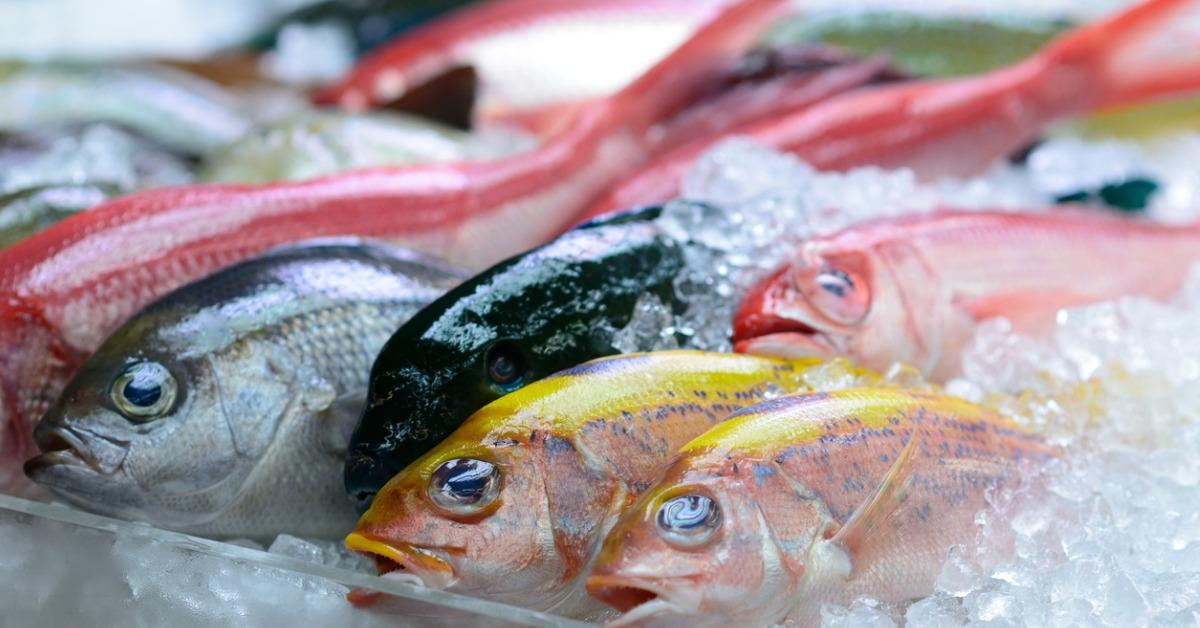 colourful-catch-picture-id493597702-1539956833341-1539959004659.jpg