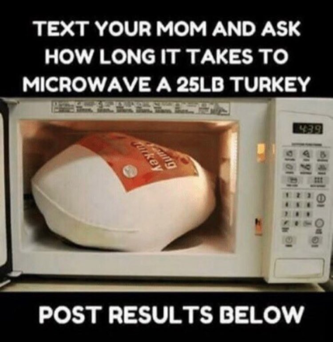 microwave-turkey-challenge-1542642748664-1542642753149.png