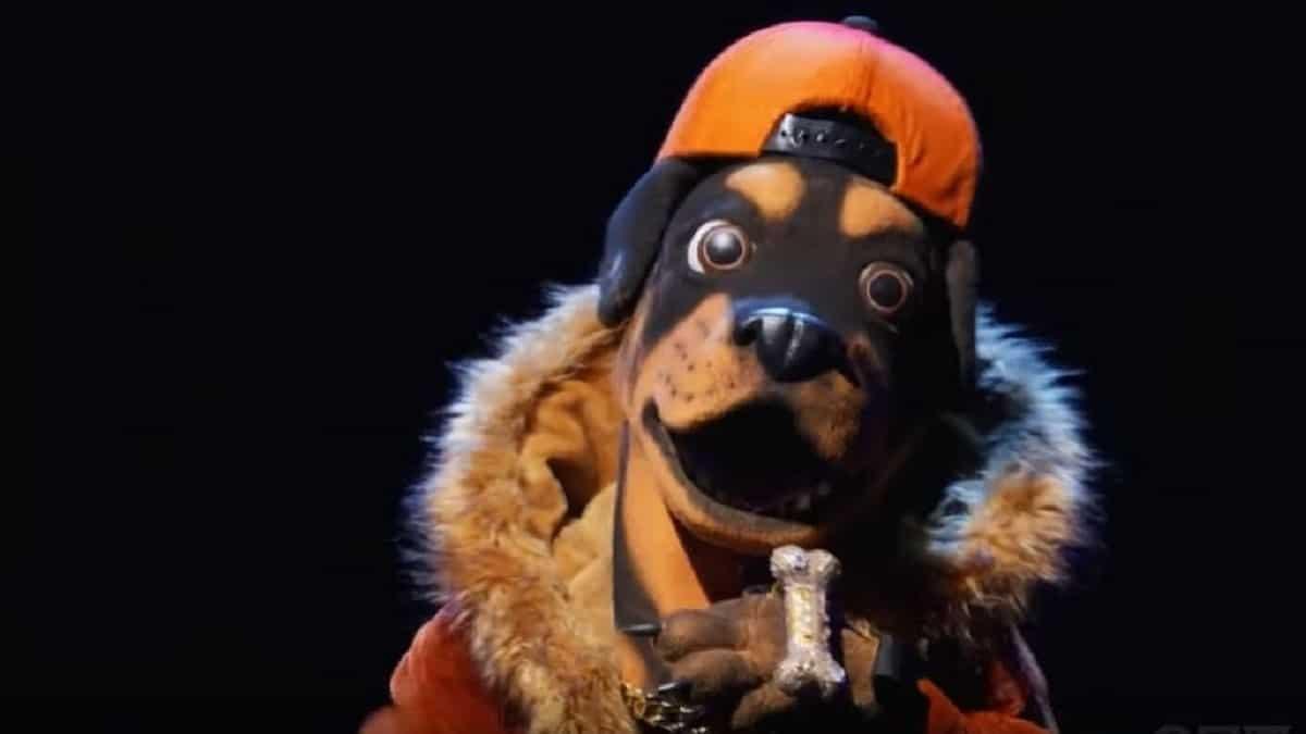 rottweiler masked singer best guesses