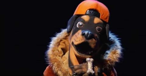 rottweiler-masked-singer-best-guesses-1574285531063.jpg