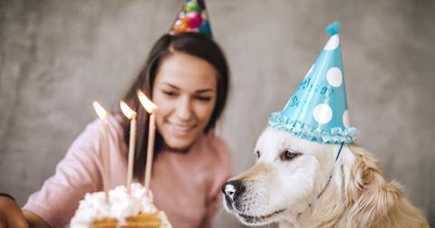 dogday-1588972329393.jpg