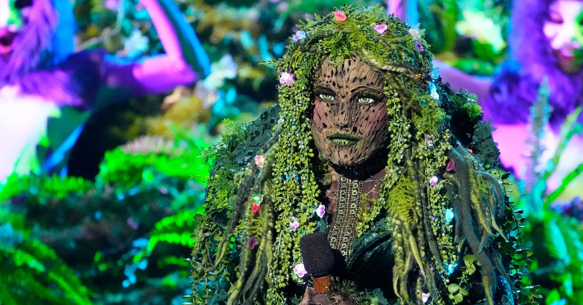Mother Nature on 'The Masked Singer'