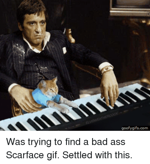 scarface-meme-8-1544214287658.png