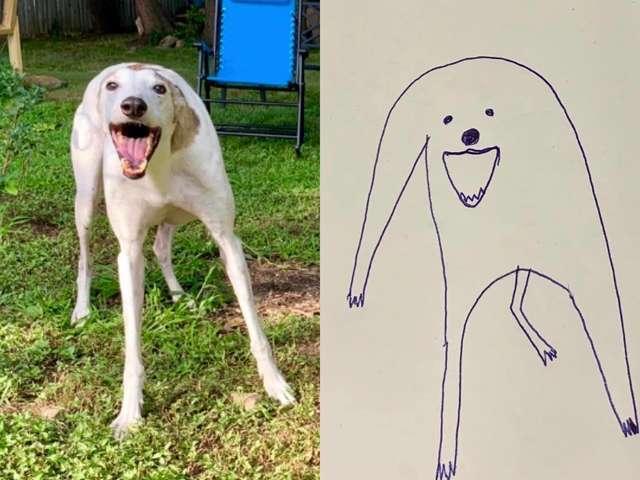 2-flat-dog-doodles-1567790556628.jpg