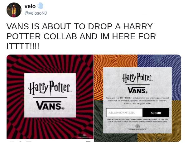 harry-potter-vans-3-1555992114252.jpg