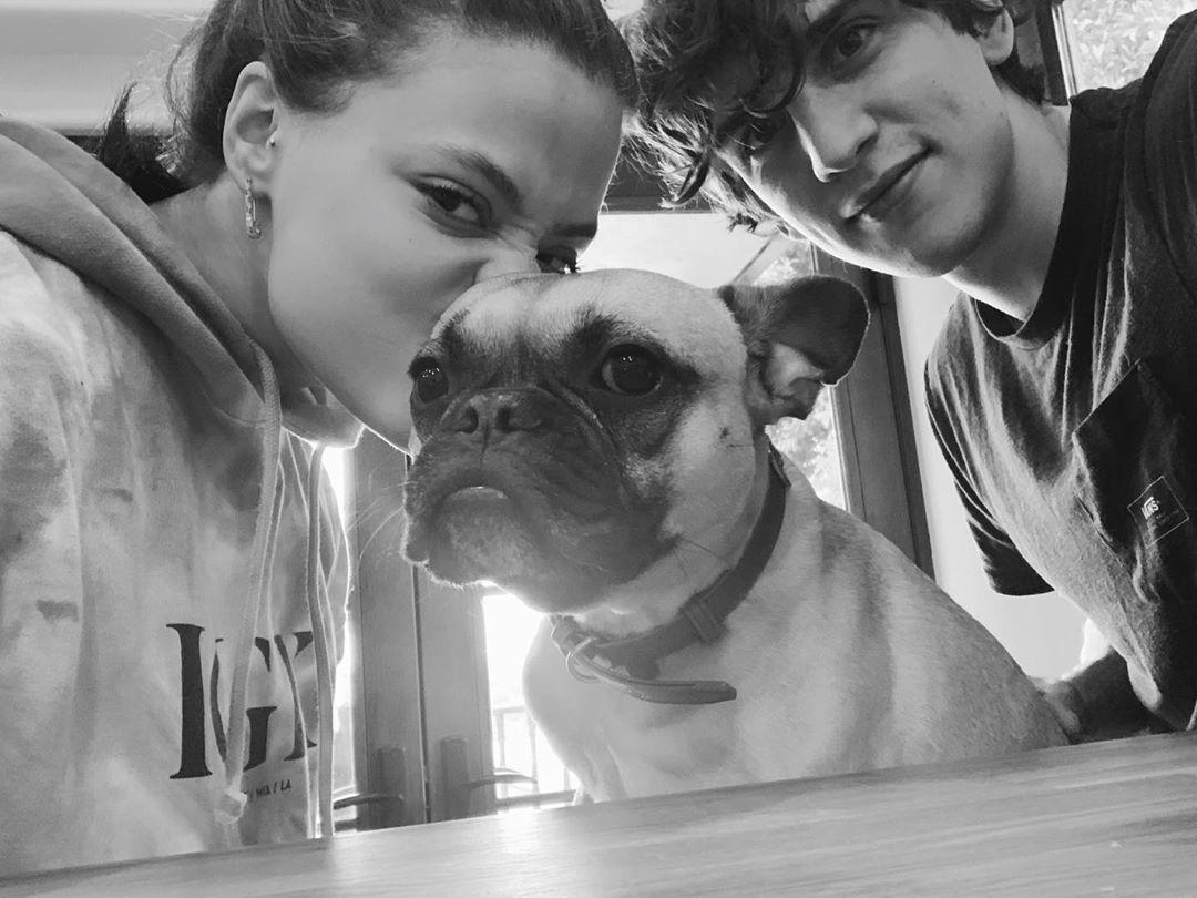sarah-jeffery-and-nick-hargrove-dating-french-bulldog-1565030786465.jpg