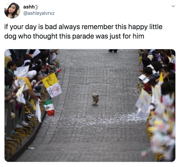 20-wholesome-1568141147447.jpg