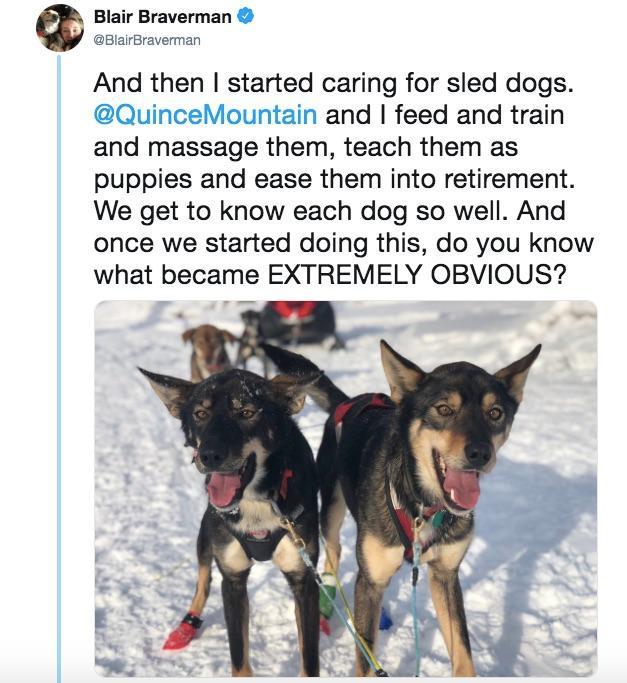 3-sled-dogs-1563217776997.jpg