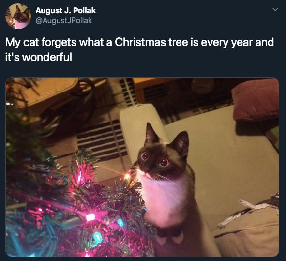 7-christmas-memes-1575499331198.jpg