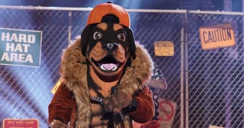rottweiler-masked-singer-1574284179412.jpg