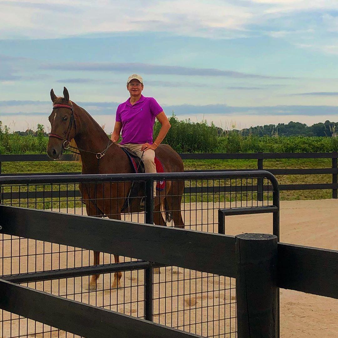 carson-kressley-saddlebred-horses-1563548119054.jpg