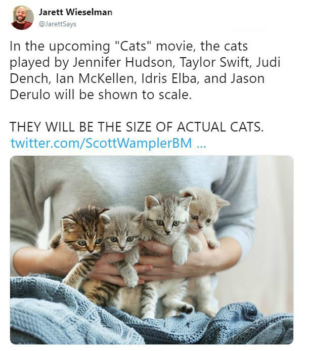 cats-tweet-1-1554397221163.JPG